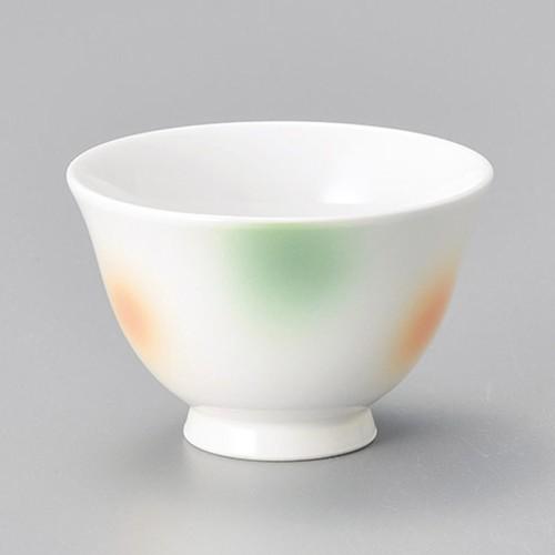 45623-070 彩色反煎茶|業務用食器カタログ陶里30号